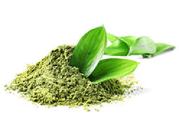 Organic Matcha Leaves
